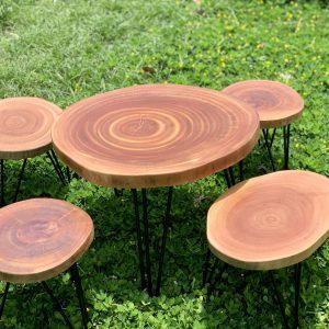 Gỗ xà cừ là gì? Ứng dụng của gỗ xà cừ làm đồ dùng bằng gỗ